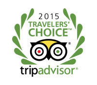 ComfortDelGro 2015 Travelers' choice trip advisor logo